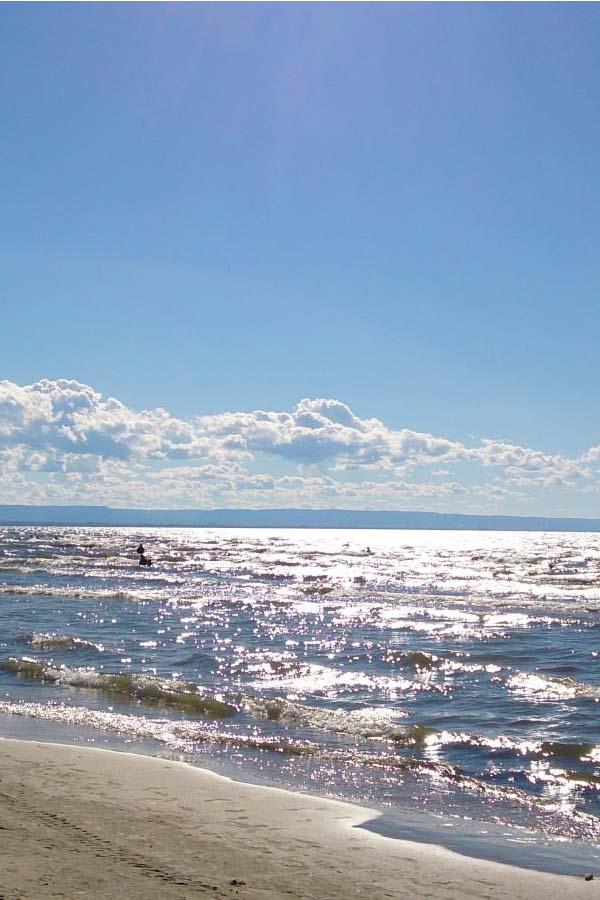 beachlife4